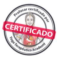 Yoga Terapéutico Academy